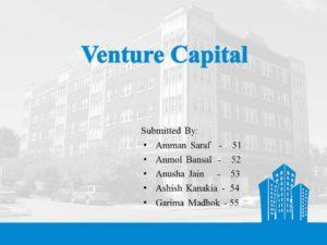 Venture Capital Slide1