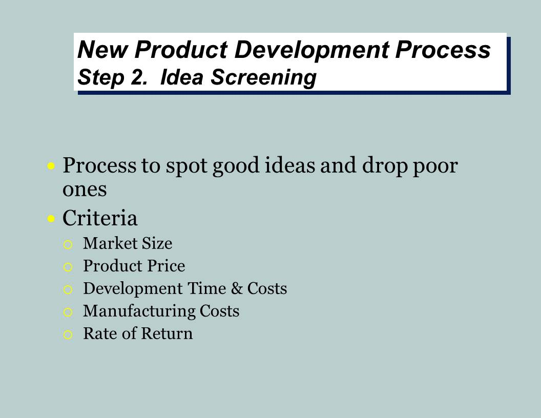 New Product Development Project
