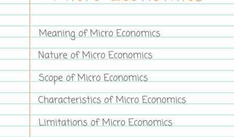 Micro Economics Introduction